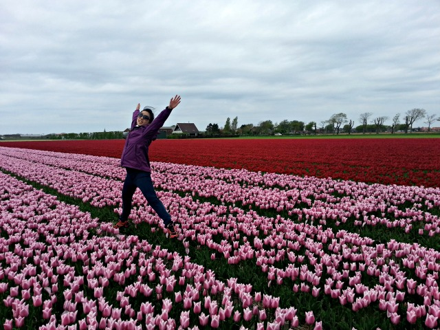 val-jumping-tulip-fields