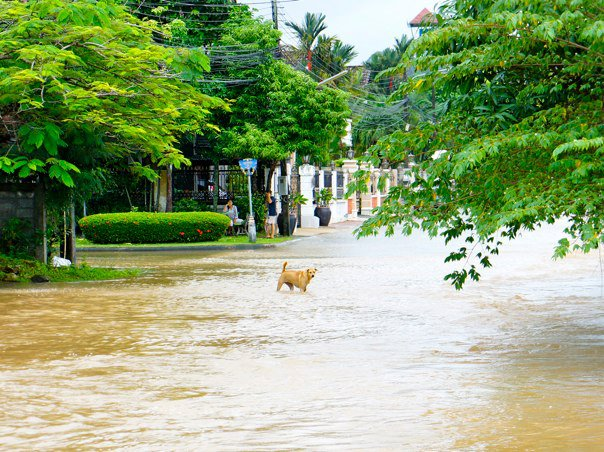 phuket-raining-flooding