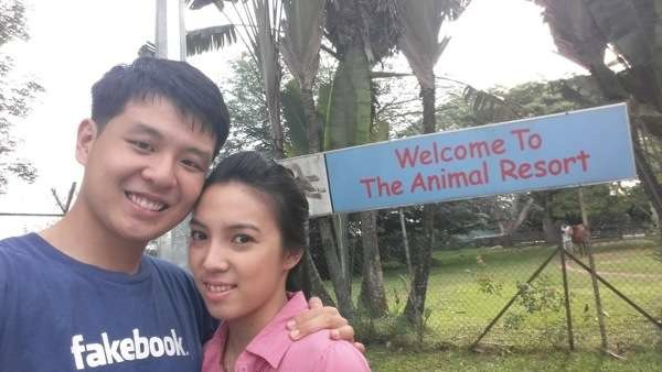 the animal resort